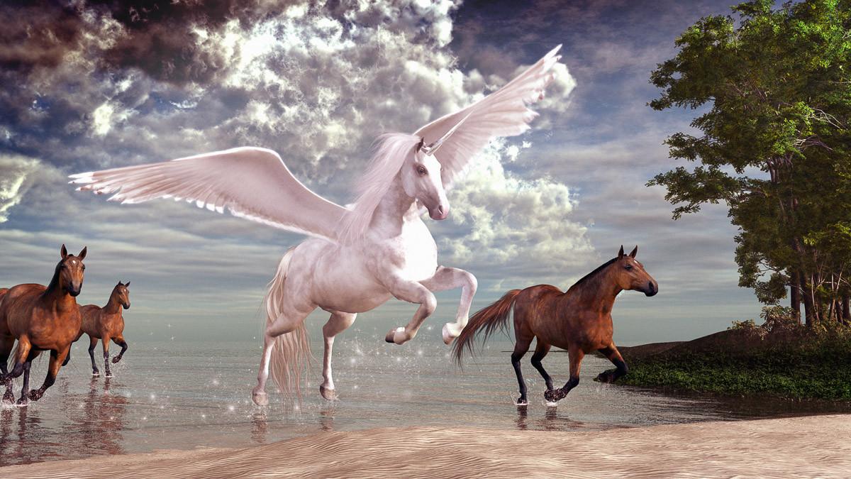 Pegasus und Pferde