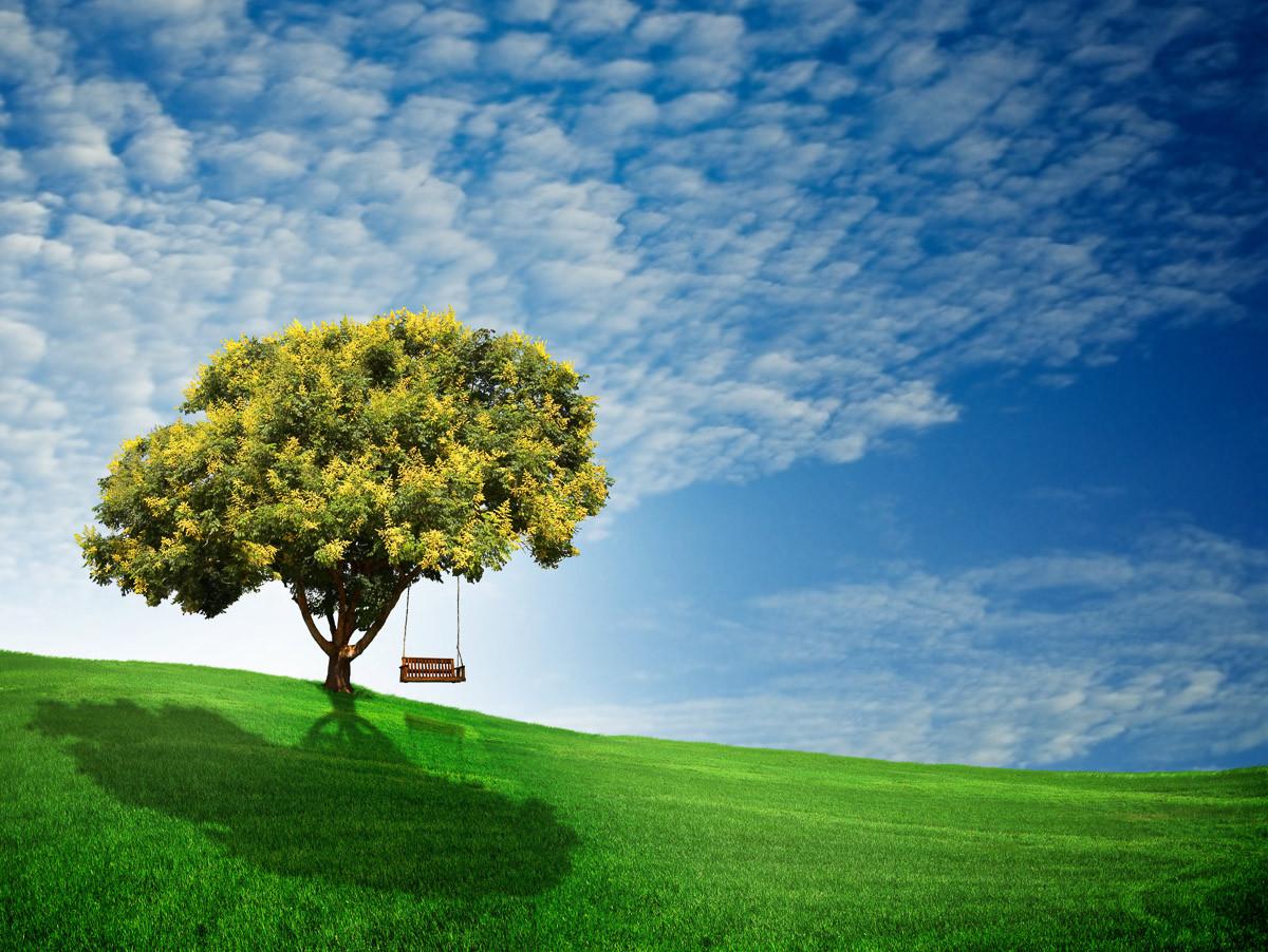 Goldener Regenbaum