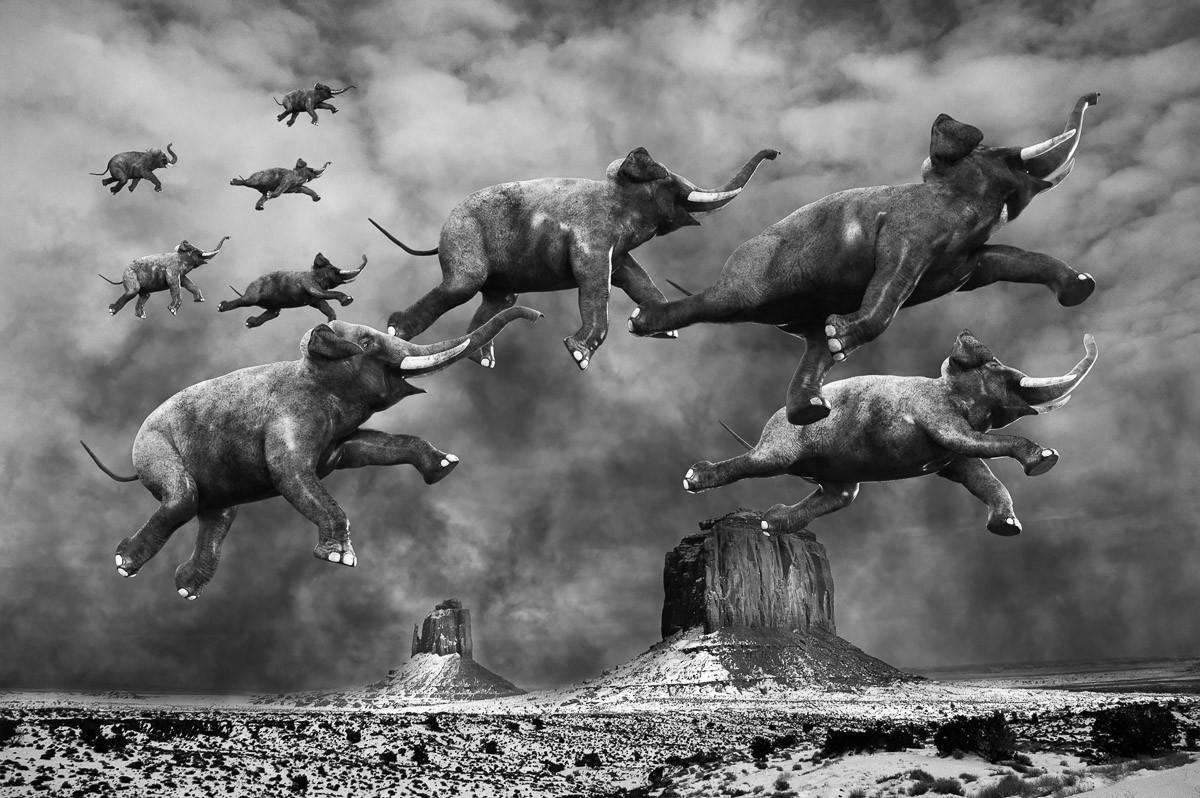 Surreale fliegende Elefanten