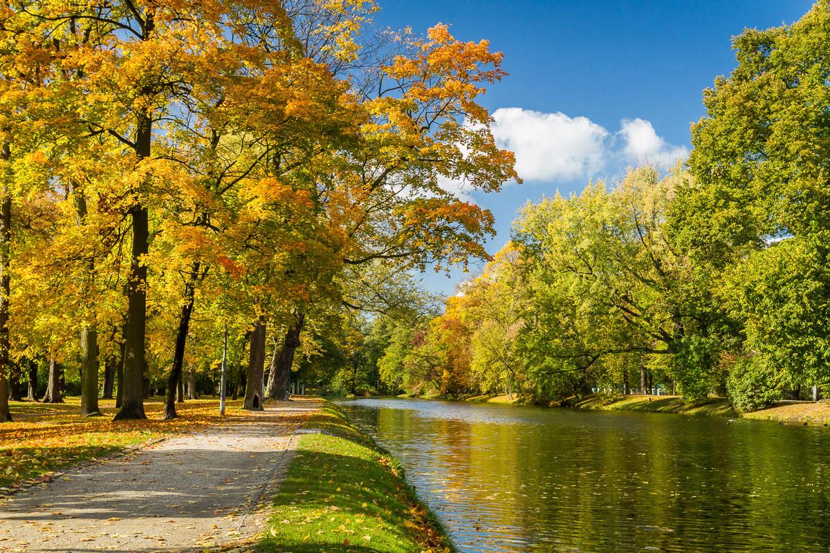 Fluss im Herbstpark
