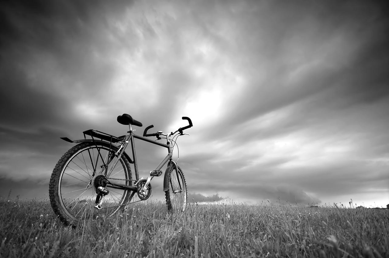 Fahrrad Schwarz & Weiß