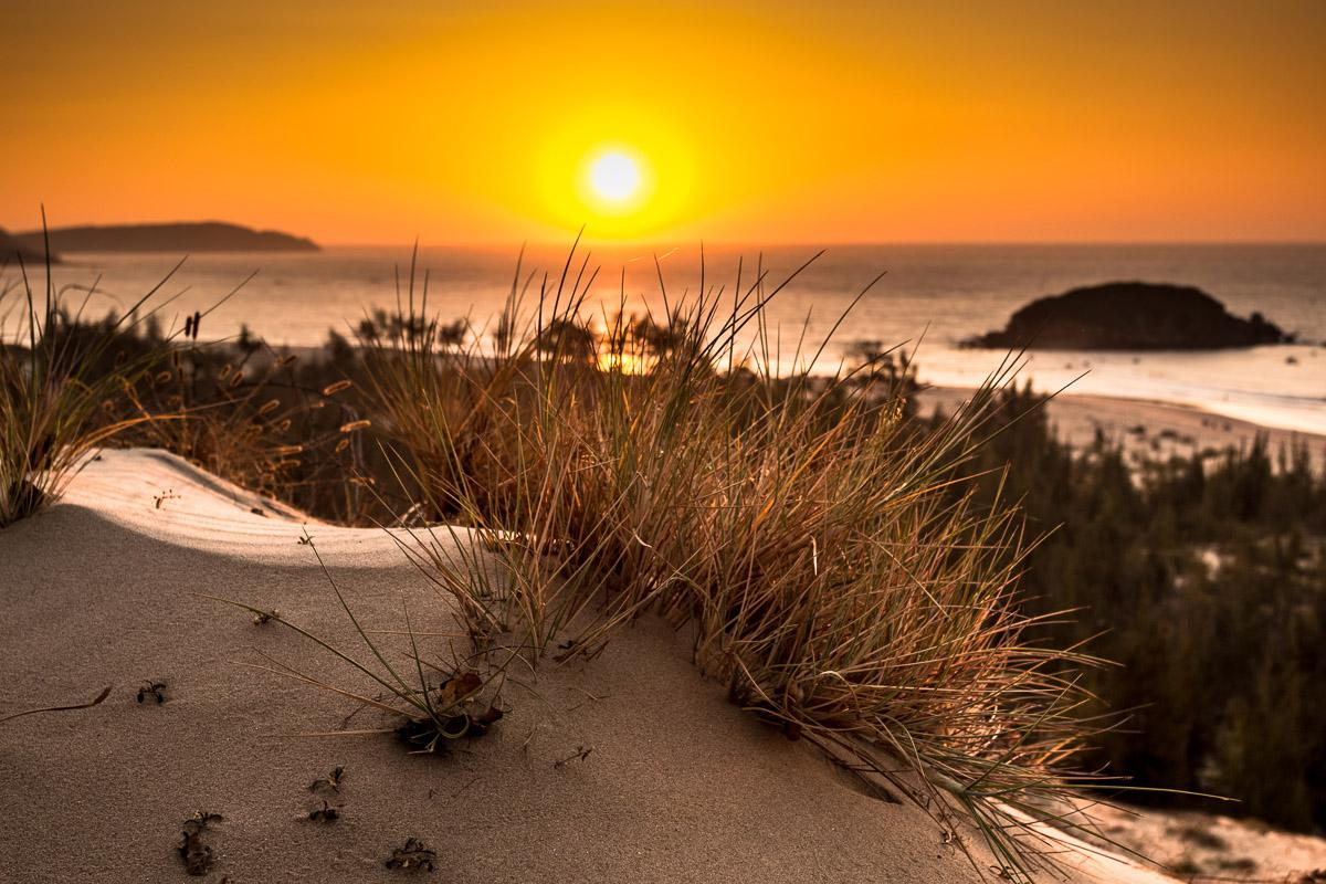 Glühende Sonne Bush View