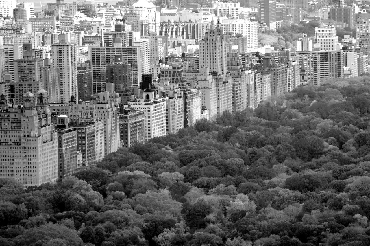 Central Park Schwarz & Weiß