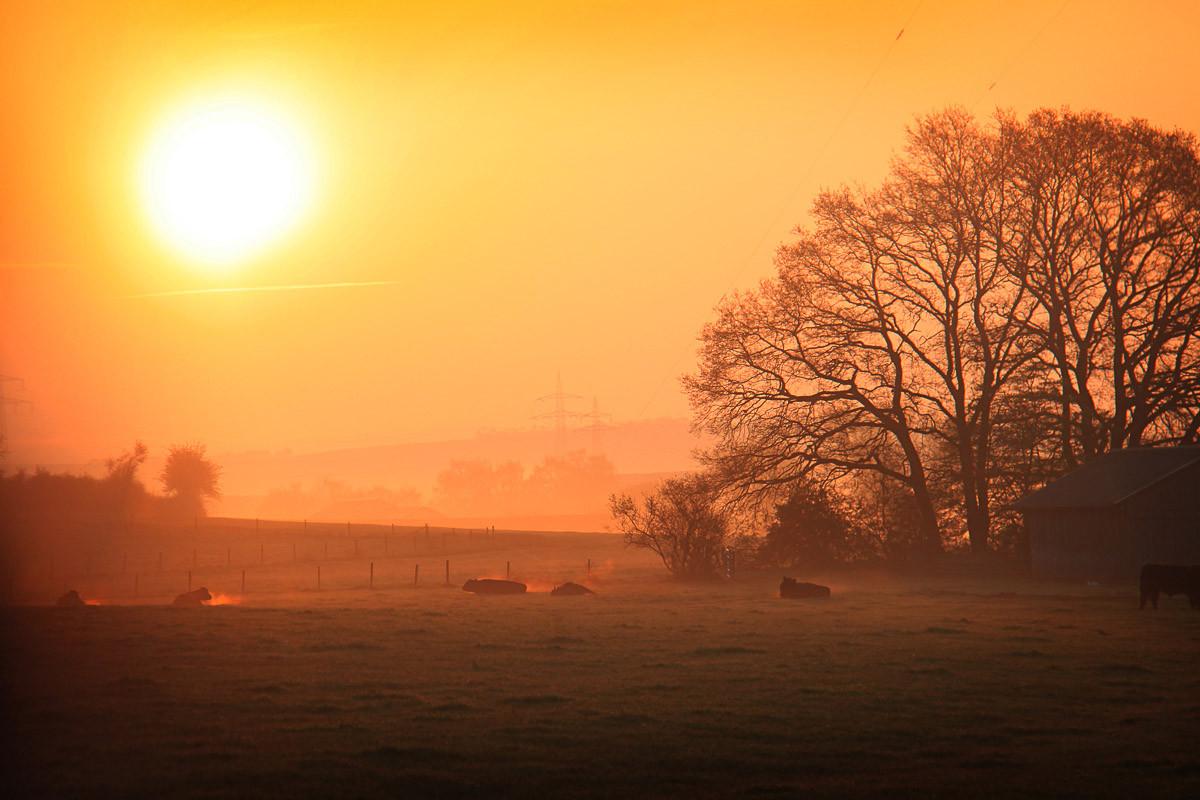Sonniger nebliger Sonnenaufgang