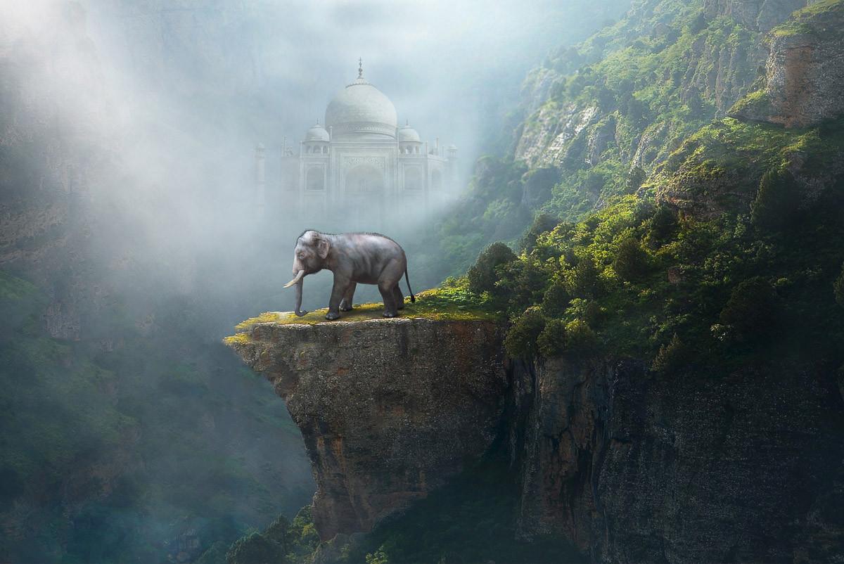 Indischer Elefant Taj Mahal