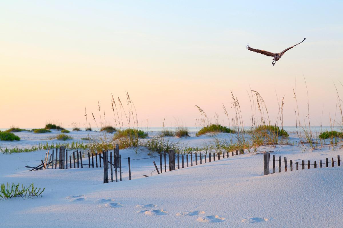 Weißer Sand Florida Beach