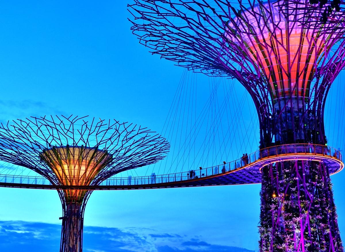 Singapore Bay Supertrees