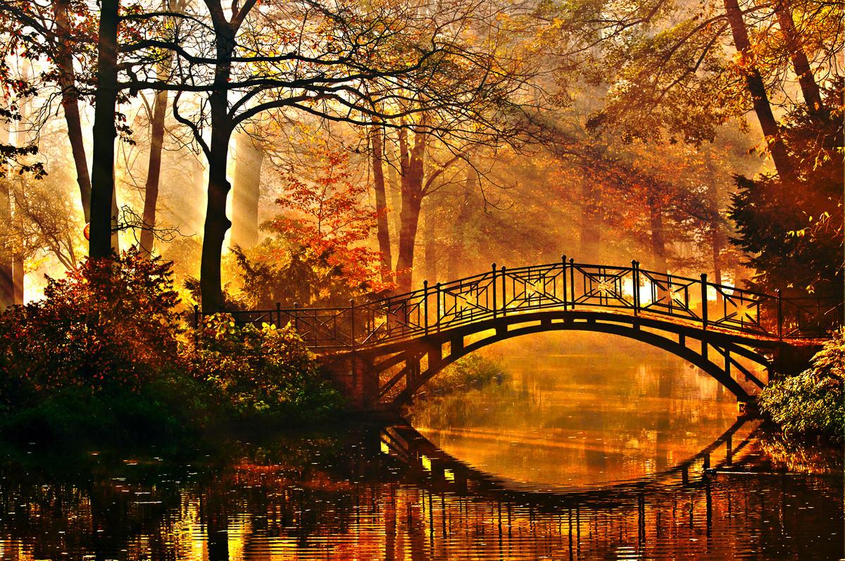 Misty Park Bridge