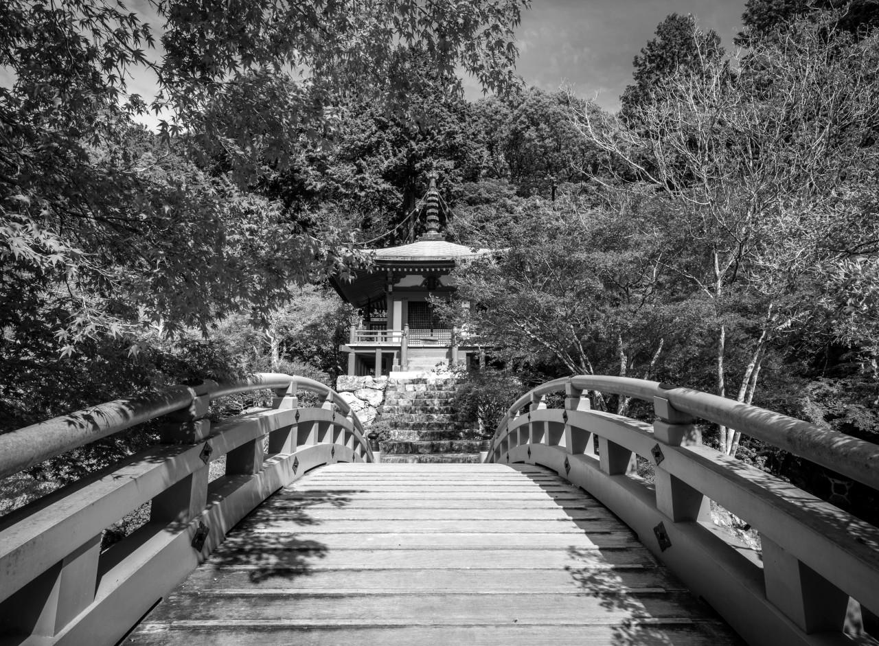 Japanischer Garten Schwarz & Weiß