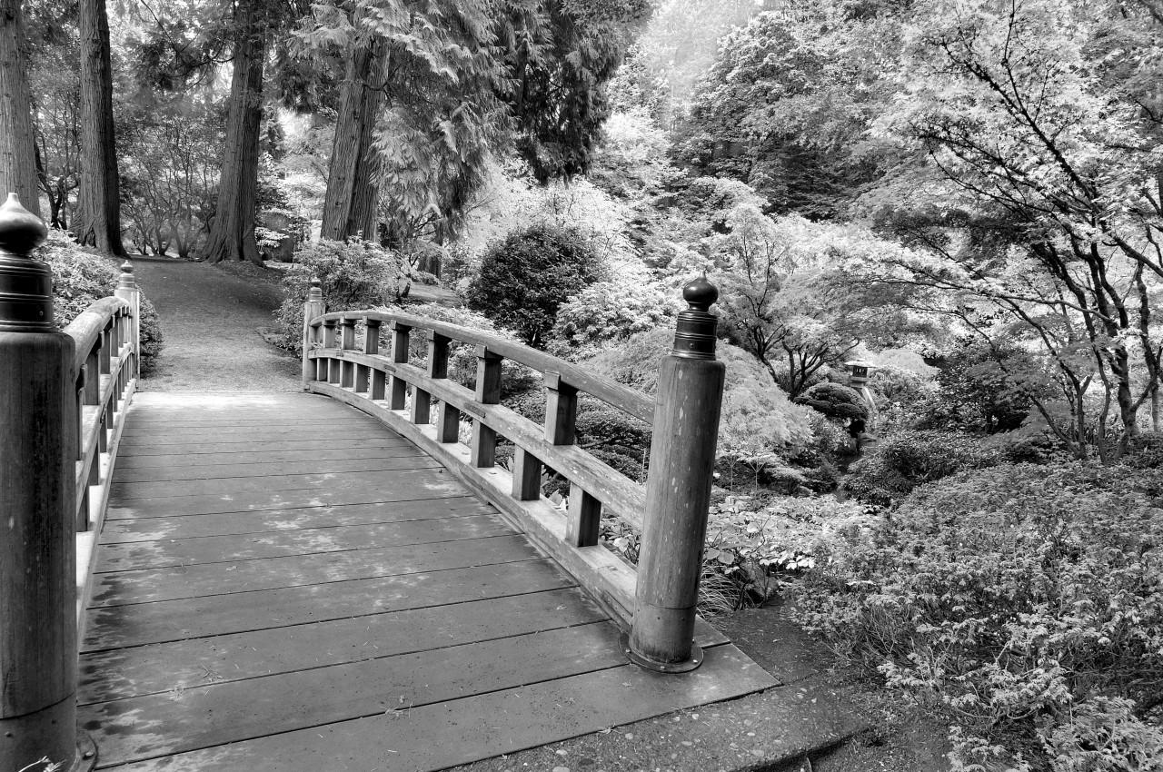 Brücke Schwarz & Weiß