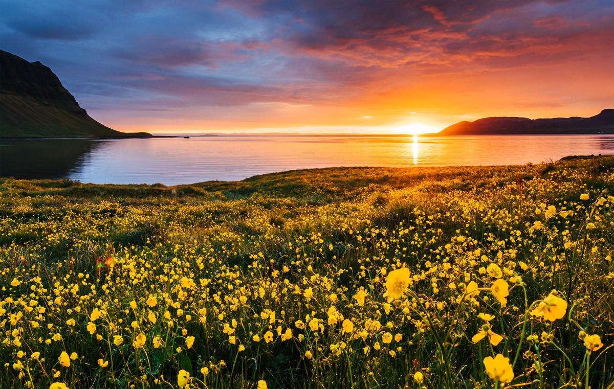 Blumenfeld Kirkjufell Island