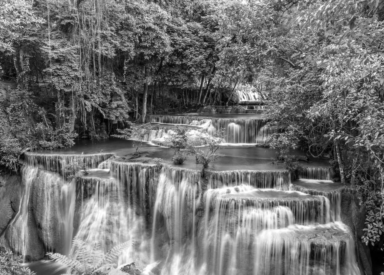 Wasserfall im Wald Schwarz & Weiß