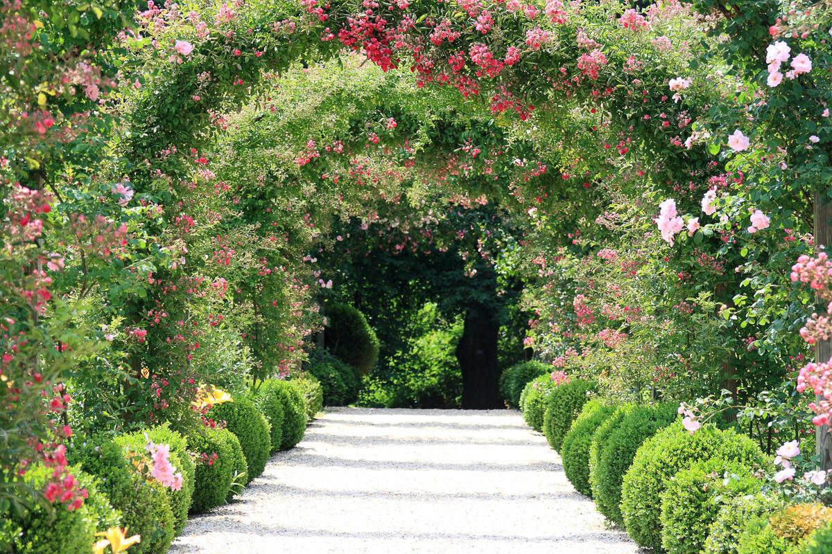 Rosenbogengarten