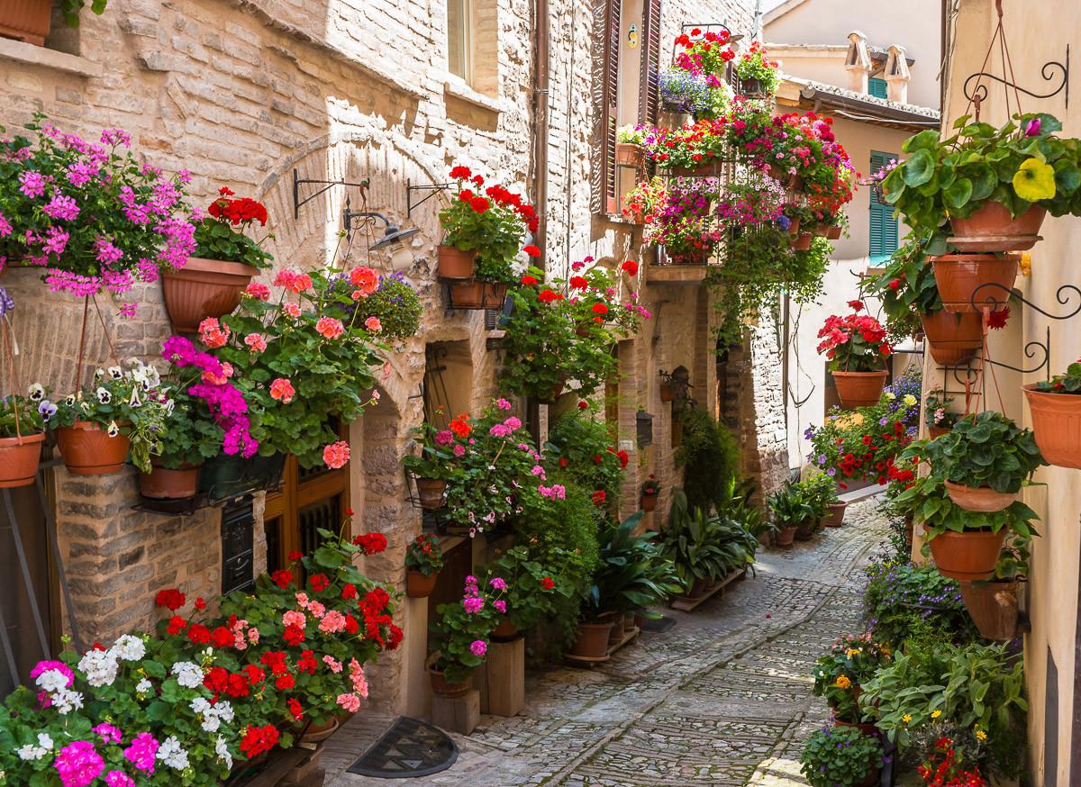 Blumengasse in Spello