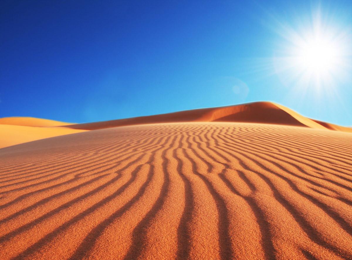 Wüsten Sune