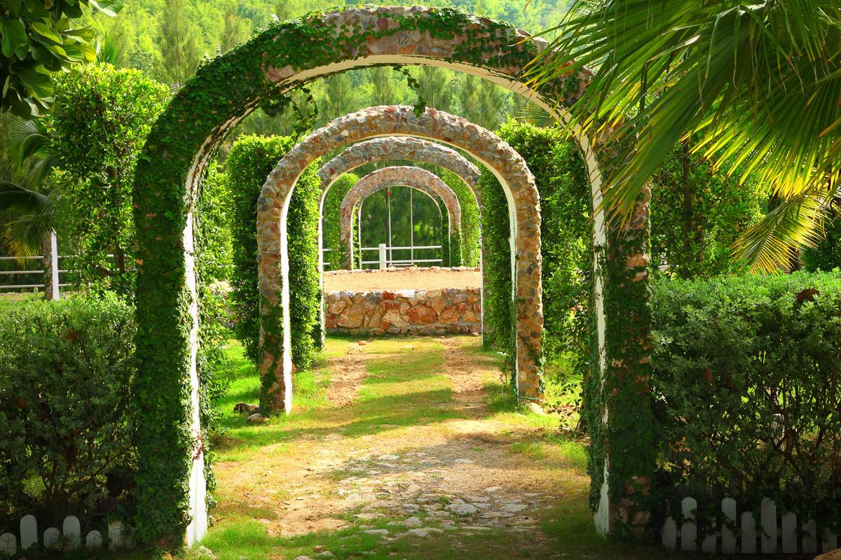 Pergola Garten