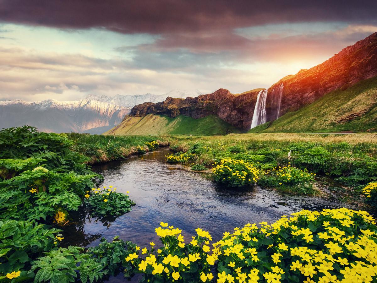 Seljalandfoss Wasserfall Island
