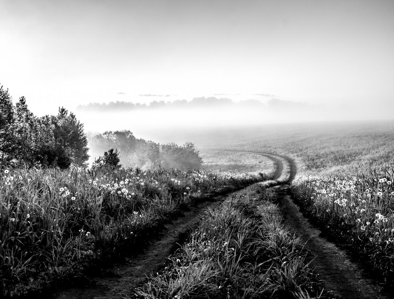 Feldweg Schwarz & Weiß