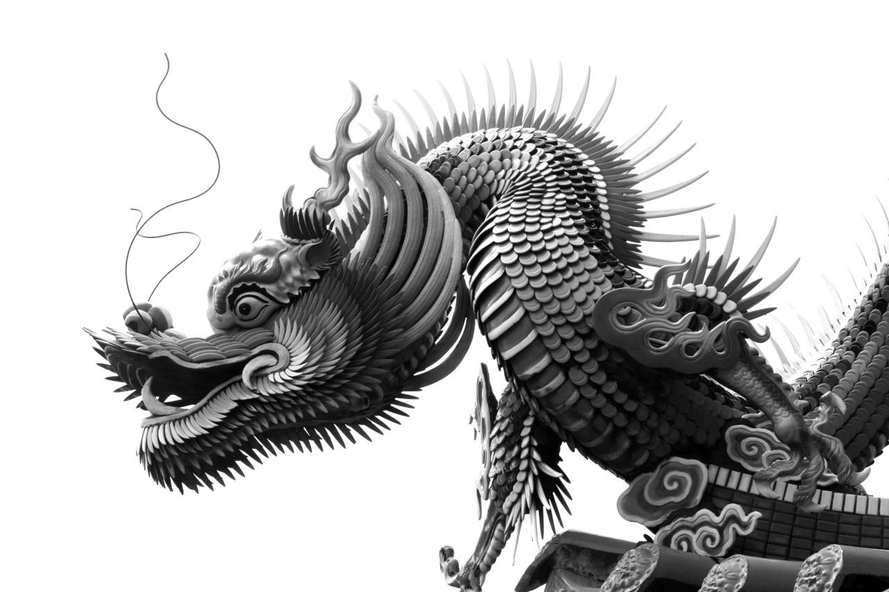 Chinesischer Drache Schwarz & Weiß