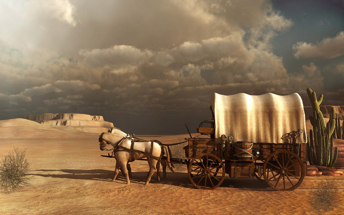 Westliche Kutsche