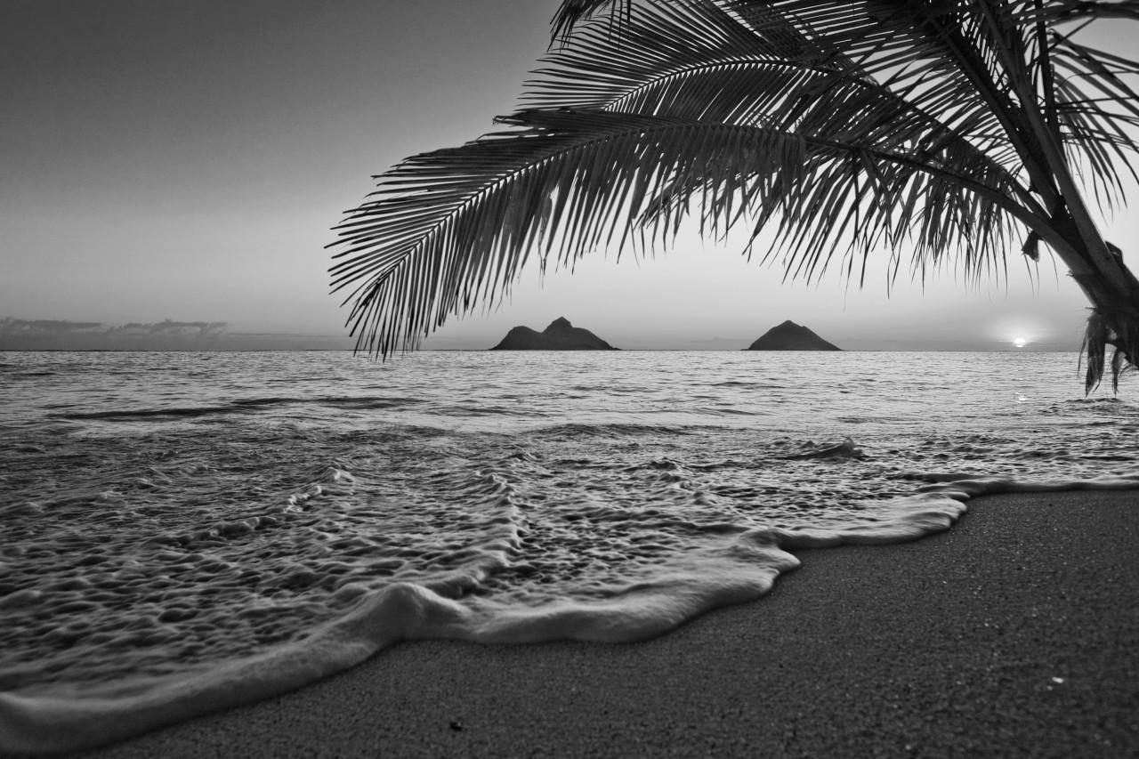 Strand Schwarz & Weiß