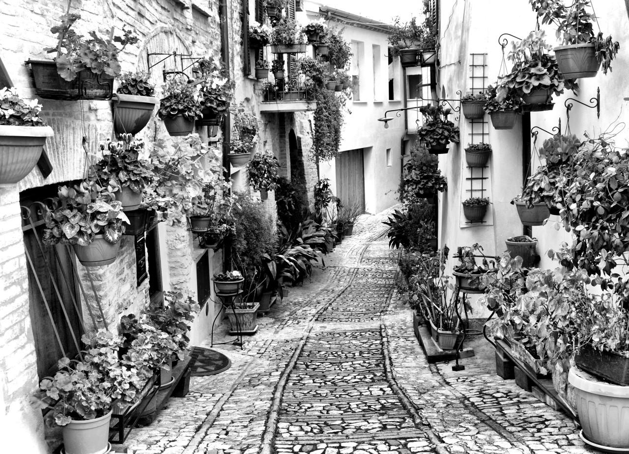 Häuser Schwarz & Weiß