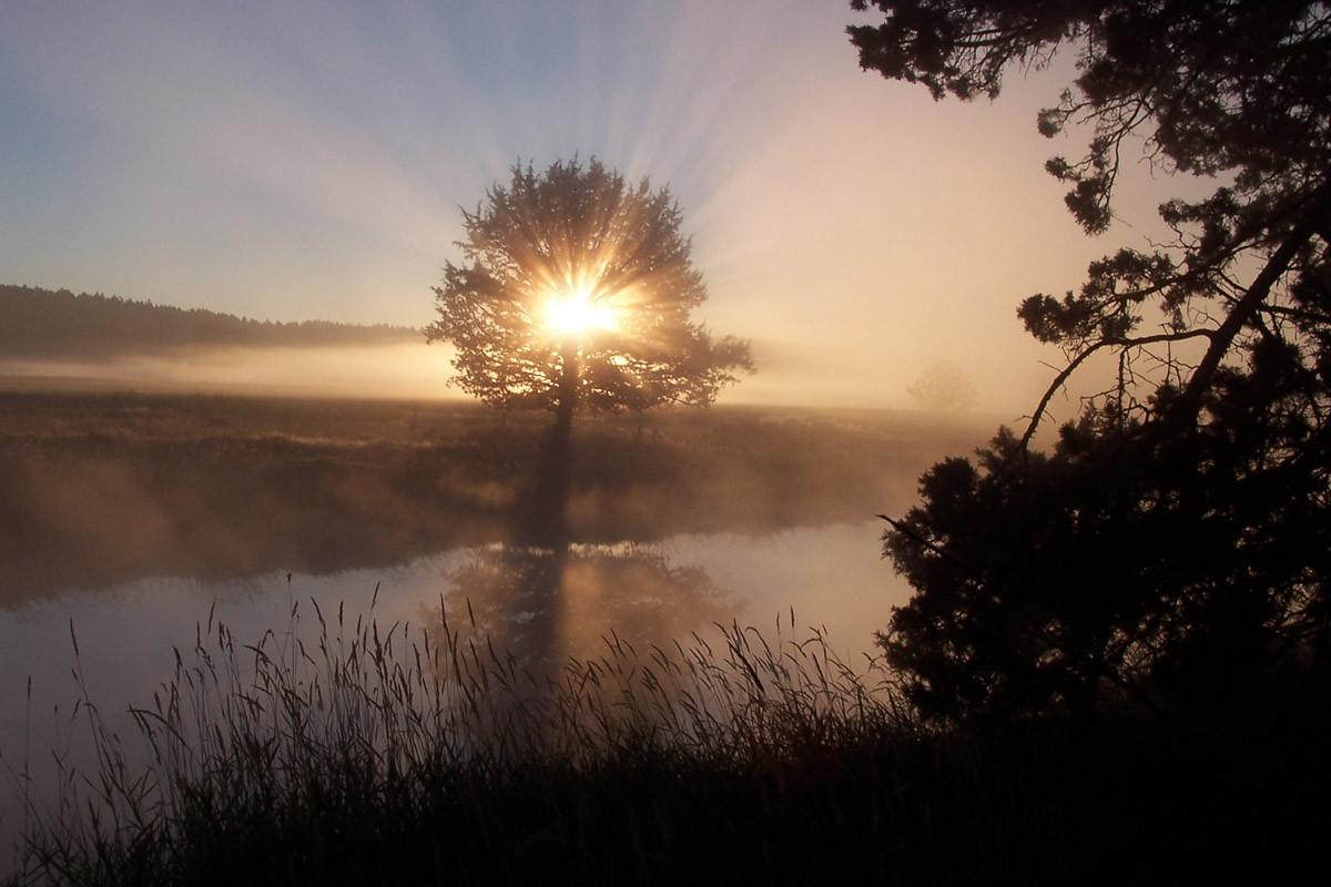 Fluss Sonnenaufgang