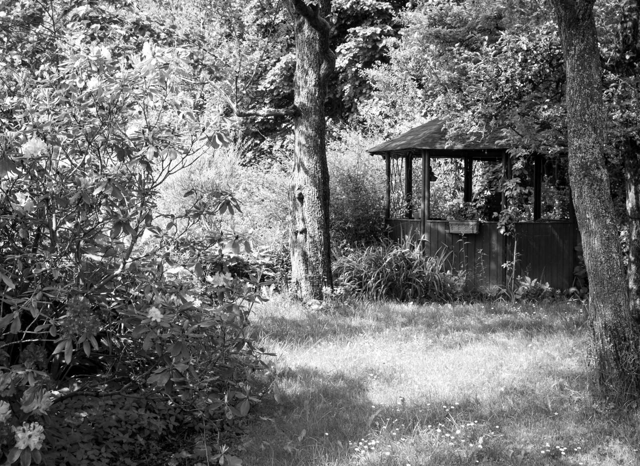 Garten Schwarz & Weiß