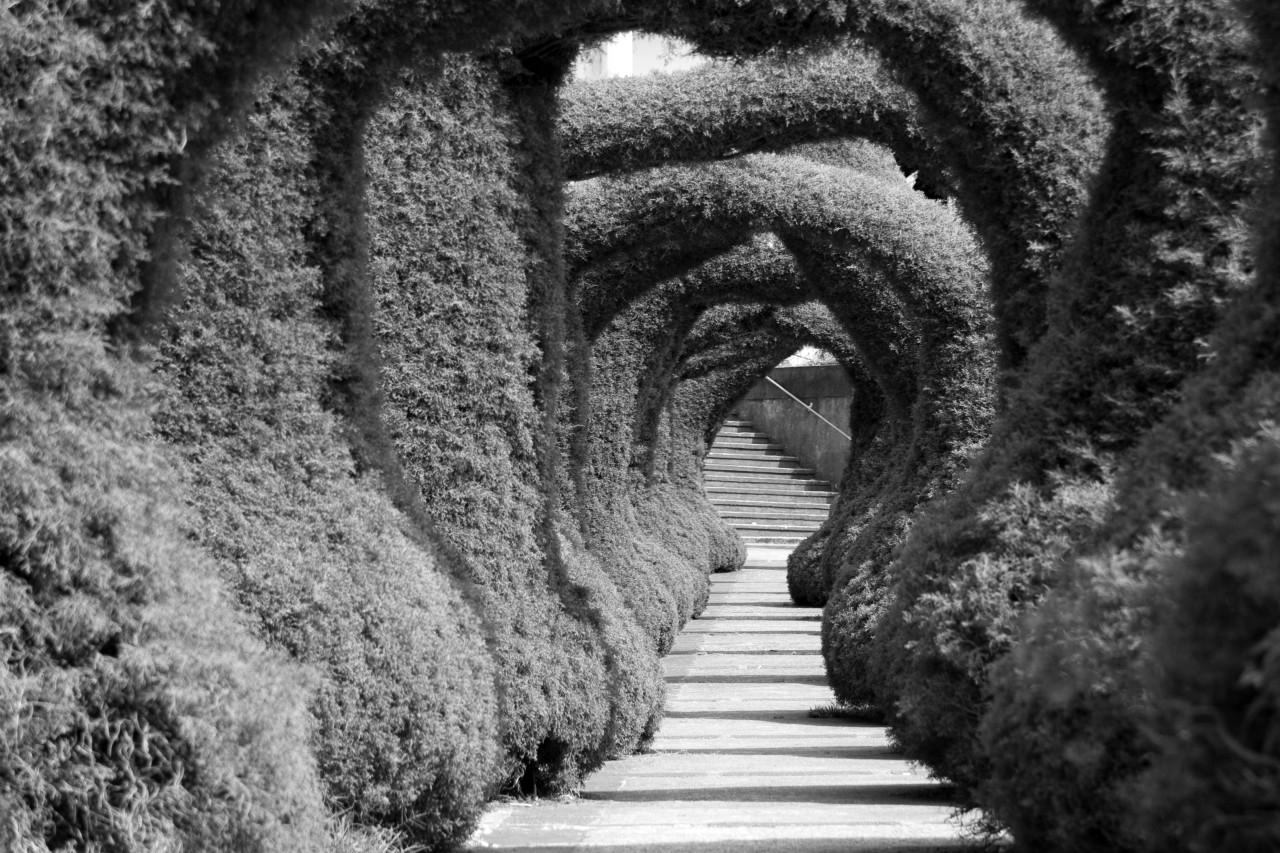 Treppe Schwarz & Weiß